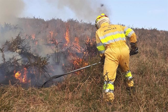 Incendio forestal. Imagen de archivo