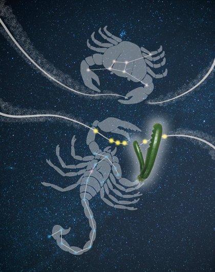 Las células defienden su genoma para la facilitar la fertilidad