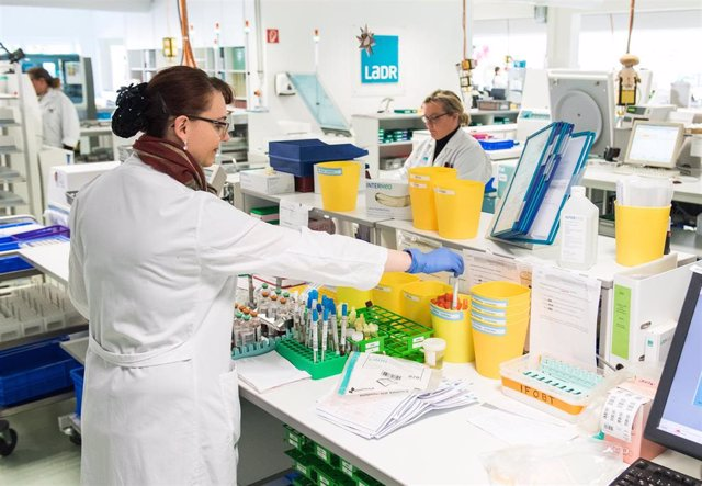 ILLUSTRATION - 27 March 2020, Schleswig-Holstein, Geesthacht: An employee of the central laboratory of the LADR laboratory network Dr. Kramer and colleagues holds a smear of a molecular biological test for the SARS-CoV-2 virus.