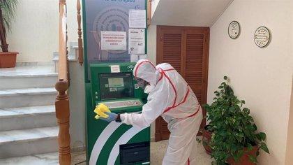 Diputación contrata servicios para desinfectar calles y edificios de 40 localidades