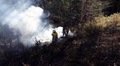 Activos tres de los once incendios provocados esta noche en Cantabria