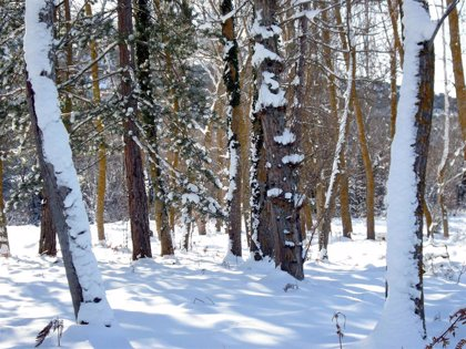 El tiempo invernal regresa este lunes a España por la entrada de una masa de aire muy frío