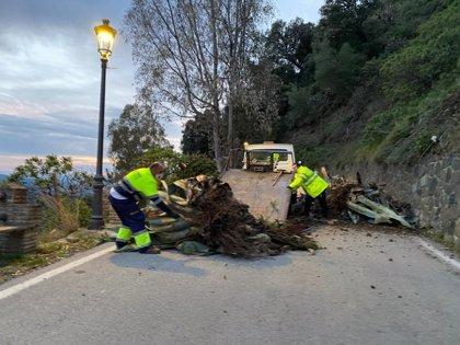 La Diputación de Málaga restablece la carretera de entrada a Genalguacil tras un desprendimiento por las lluvias