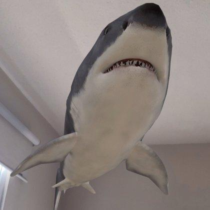Así es la herramienta de Google que permite ver animales en 3D en tu salón
