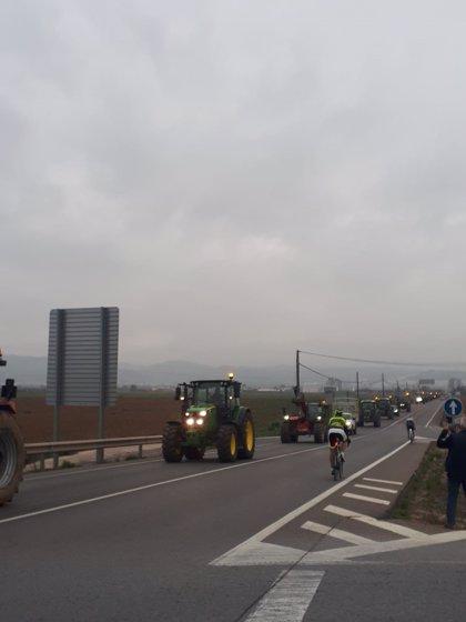 """Asaja Málaga alerta de la """"dramática situación"""" del sector ganadero por los """"graves problemas de mercado"""" ante COVID-19"""