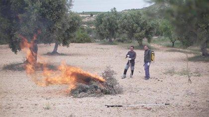 El plazo para realizar quemas agrícolas en Aragón concluye este martes