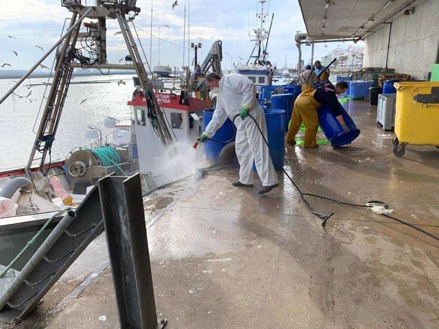 Fumigación en instalaciones portuarias.