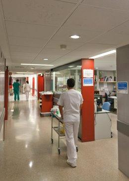 Profesioales sanitarios en los pasillos del Hospital Virgen del Rocío de Sevilla