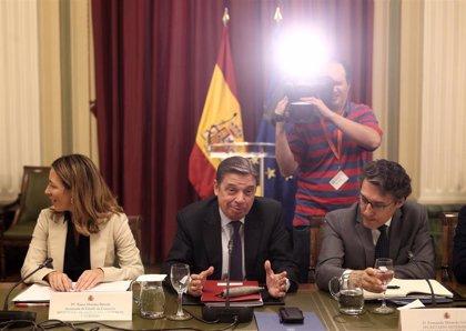 España pide a Bruselas medidas de apoyo a los sectores agrarios más afectados por la crisis del coronavirus