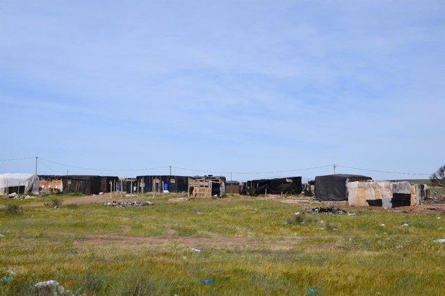 Infraviviendas en uno de los asentamientos de la provincia de Almería