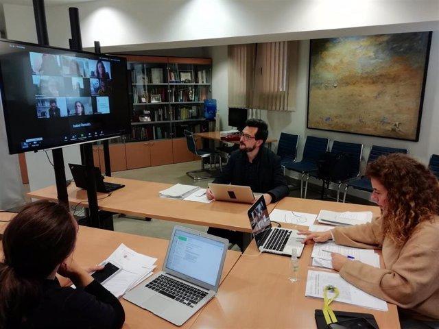 La consellera de Presidencia, Cultura e Igualdad, Pilar Costa, durante una reunión telemático con representantes de la plataforma CREA.