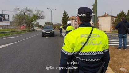 Policía Local de Sevilla denuncia a 166 personas más y se desinfectan las paradas más concurridas de Tussam
