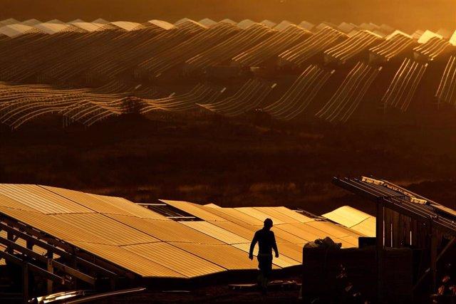 Economía/Empresas.- Iberdrola pone en marcha 'Núñez de Balboa', la planta fotovoltaica más grande de Europa