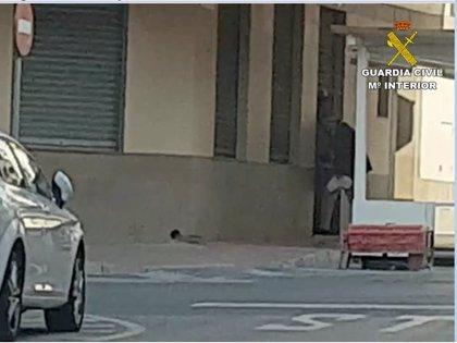 La Guardia Civil propone sancionar a un bar de Torrevieja por abrir clandestinamente y a un cliente por consumir