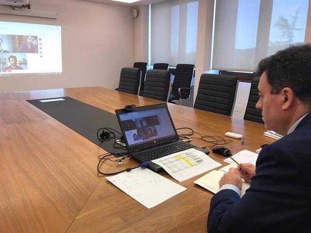 Reunión telemática entre el conselleiro de Cultura e Turismo, Roman Rodríguez, y representantes del sector audiovisual y del editorial.