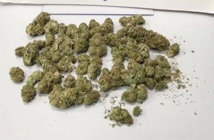 Intervenidos 35 gramos de marihuana durante un control preventivo de la Policía Local en Cartagena