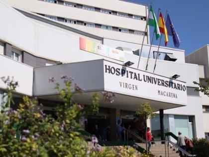 Hospital Virgen Macarena de Sevilla advierte del adelanto de la alergia primaveral pero con niveles altos pocos días