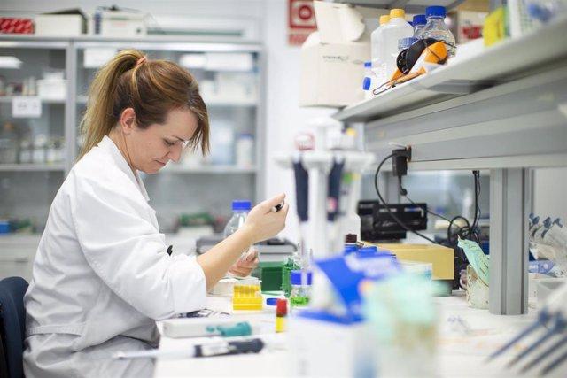 La Fundación Mutua destina nuevas ayudas a personas vulnerables e impulsa la investigación médica