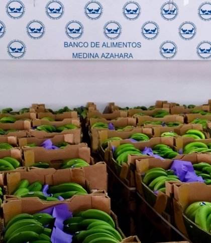Asprocan dona más de 220.000 kilos de plátanos a los Bancos de Alimentos que beneficiarán a medio millón de personas