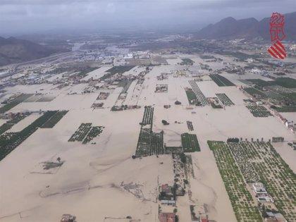 El BOE publica la rebaja del IRPF para agricultores y ganaderos afectados por daños climáticos en 2019
