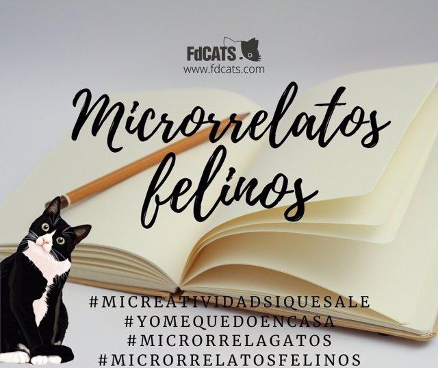 Cartel del Concurso de 'Microrrelatos Felinos' que convoca FdCATS.