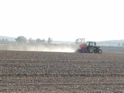 La rebaja en los módulos supondrá 270 millones menos en la base imponible de los agricultores de Andalucía