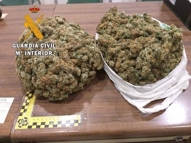 Marihuana intervenida en Navalmoral de la Mata