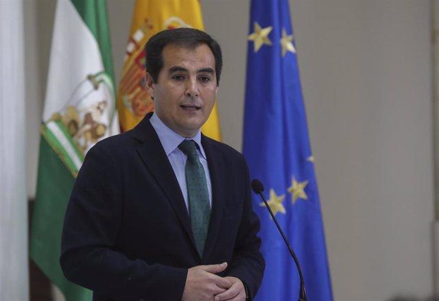 El portavoz del grupo parlamentario PP-A, José Antonio Nieto