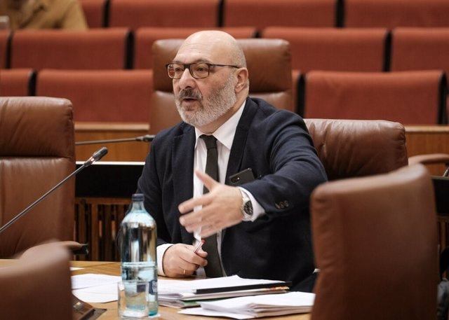 El portavoz parlamentario de Vox Andalucía, Alejandro Hernández, interviene en un debate sobre el coronavirus en la Diputación Permanente de la Cámara