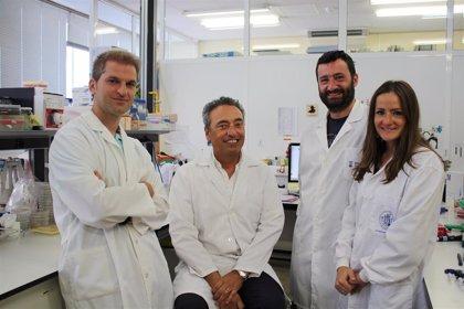 Investigadores estudiarán si la vacuna contra la tuberculosis MTBVAC es útil frente al coronavirus