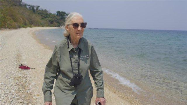 Jane Goodall: La gran esperanza en National Geographic