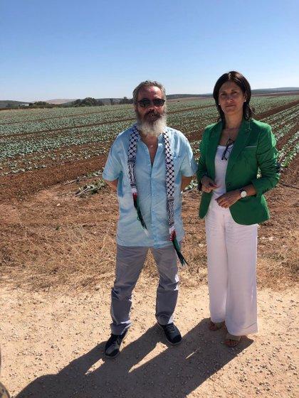 Marinaleda (Sevilla) pide pruebas rápidas de Covid-19 para su plantilla de ayuda a domicilio y para los usuarios