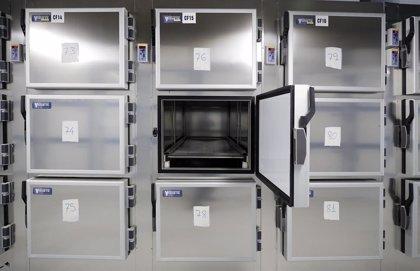 Madrid insiste en que el Gobierno solo cuenta fallecidos con PCR positiva y que la cifra llegaría a los 10.300