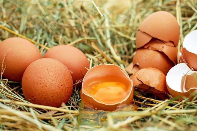¿Se Deben Lavar Y Desinfectar Los Huevos?