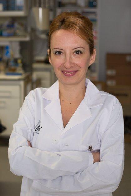Una proteína puede reducir la progresión de la fibrosis de riñón