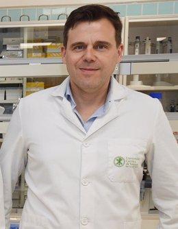 El profesor de Biotecnología de la Universidad Católica de Valencia (UCV) Ángel Serrano