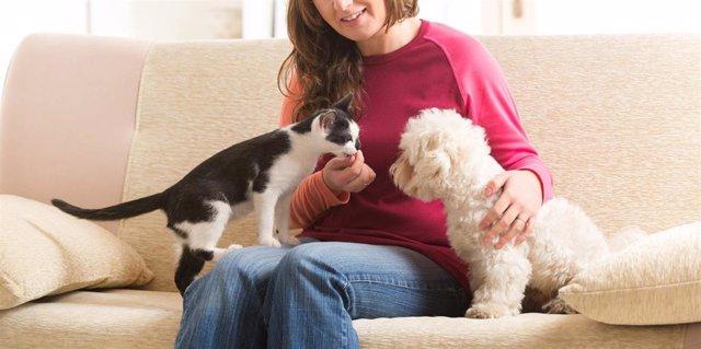 Perros y gatos, el 74% de los dueños de mascotas dice estar mejor durante el confinamiento.