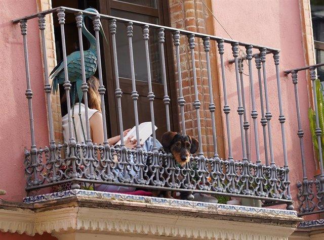 Una joven leyendo un libro en la terraza de su casa