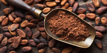 El cacao modifica la microbiota intestinal en pacientes con diabetes tipo 2