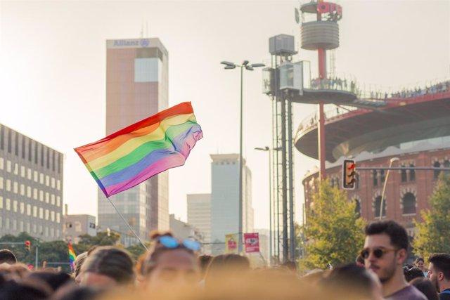 Entre los grupos minoritarios, como las personas LGTBI, el contacto con el grupo mayoritario parece relacionarse negativamente con el apoyo a la igualdad social