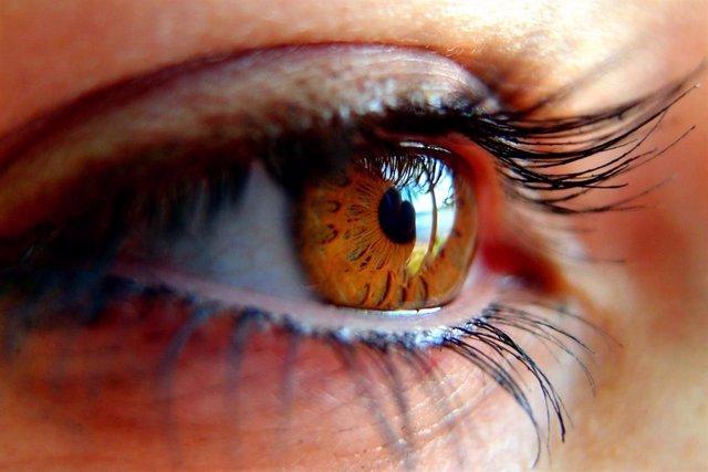 L'Associació de Glaucoma per Afectats i Familiars (AGAF) demana més investigació sobre la influncia del glaucoma.