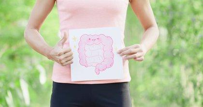 El CSIC patenta una bacteria intestinal que podría servir para tratar la depresión y la ansiedad