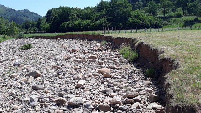 Margen izquierda del río Quivierda en Carmona