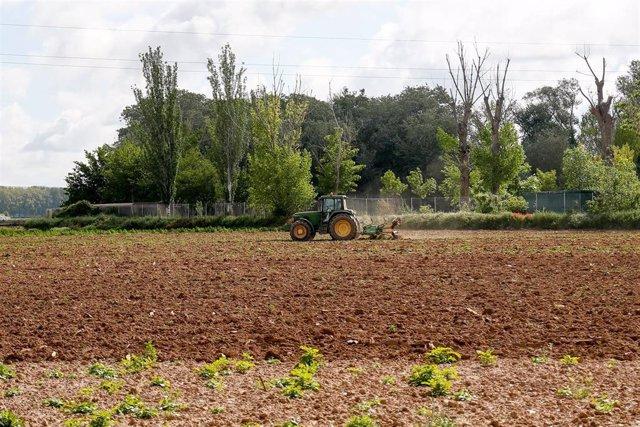 Un tractor ara un terreno de Aranjuez durante el día 45 del estado de alarma por la pandemia del coronavirus, en Aranjuez/Madrid (España) a 28 de abril de 2020.