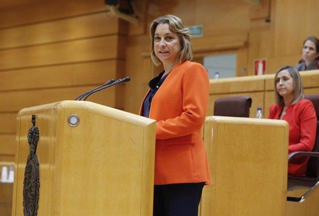 La senadora del PSOE de La Rioja María Victoria de Pablo Dávila, en la Comisión General de Comunidades Autónomas celebrada en el Senado este jueves a cuenta de la gestión de la pandemia de la COVID-19, en Madrid (España), a 30 de abril de 2020.