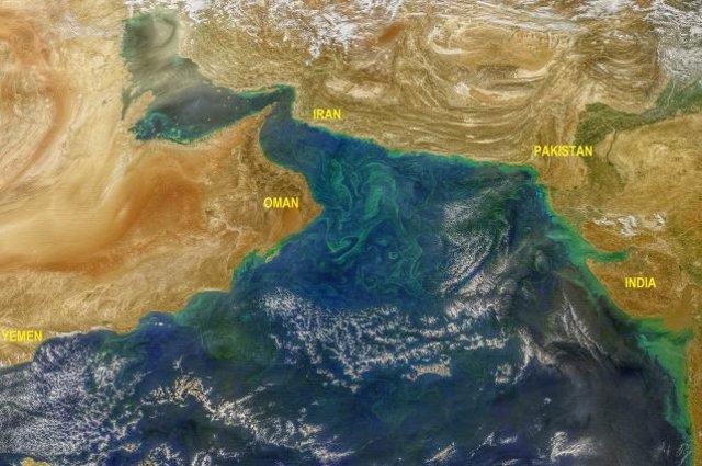Menos nieve en el Tibet favorece algas destructivas en el Mar Arábigo