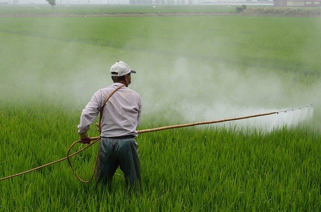 Herbicida, plaguicida, fumigar, fumigación
