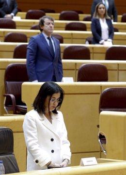 La ministra de Política Territorial, Carolina Darias, en el Senado. Tras ella, el presidente de la Junta de Castilla y León.