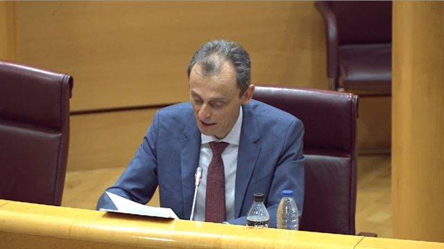 El ministro de Ciencia e Innovación, Pedro Duque, en la Comisión de Ciencia, Innovación y Universidades del Senado