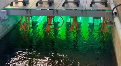 La importancia de las aguas residuales para controlar el Covid-19